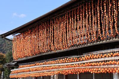 お気楽バスツアーで山梨の秋を満喫(前編)昇仙峡・ころ柿の里、ランチは甲州ワインビーフ