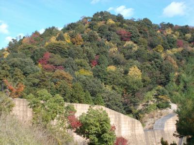 JR西日本「松山・広島割引きっぷ」で、なるべく紅葉スポットをメインに観光してきました 一日目
