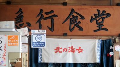日本の9つの新幹線にすべて乗る!それにブラタモリで紹介された博多南線にも。お得なフルムーングリーンパス5日間を使用して。その1(山形新幹線・上越新幹線・秋田新幹線・東北新幹線・北海道新幹線)