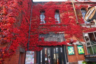 *17'11月秋。生後10カ月の赤ちゃんと行くグルメ&紅葉の函館旅行記。。。宿泊は北海道NO.1朝食で有名な「ラビスタ函館ベイ」へ♪