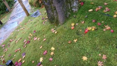 秋の日光、宇都宮〜一人旅〜【日光編】