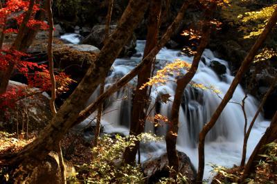 ◆晩秋の燃ゆる山鶏滝渓谷 Part①