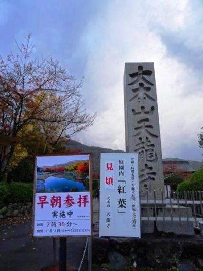 【京都】紅葉が見ごろだった天龍寺を貸切!?