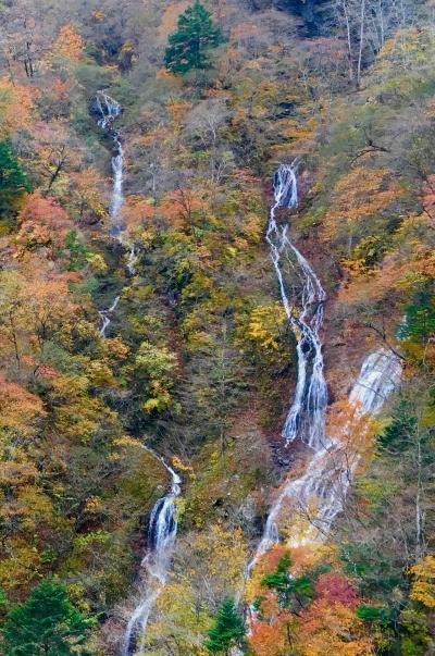 紅葉の日光へ!日光東照宮と華厳の滝といろは坂!