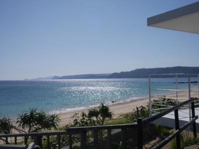 車なしで行く奄美大島、女子ひとり旅。4日目はマングローブ体験と絶景カフェ