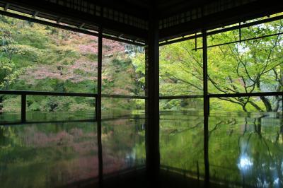 2017紅葉~京都瑠璃光院
