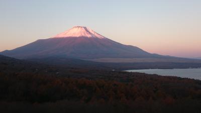 ドキッ!丸ごと富士山 河口湖、山中湖、忍野八海を周遊! (前編)
