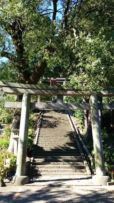 縁結びの神様 伊豆山神社に行ってみました。