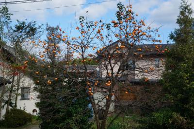 秋の飛鳥路
