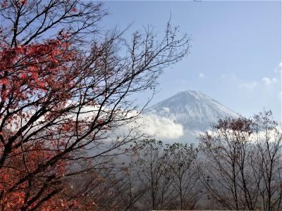 標高1、2、3位の山が同時に見られる展望台と紅葉 首都圏から日帰り