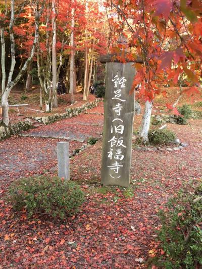 恒例秋の京都 2日目は京都から滋賀へメタセコイア並木と鶏足寺へ