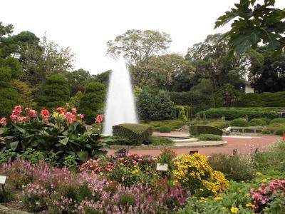 神戸・琵琶湖温泉満喫の旅 (3) 京都植物園
