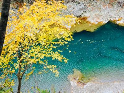 東北紅葉の旅  田沢湖から抱返り渓谷へ