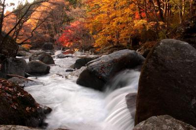 ◆晩秋の燃ゆる山鶏滝渓谷 Part②