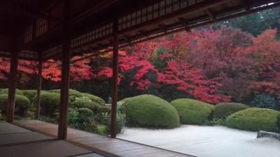 秋、京都 2017