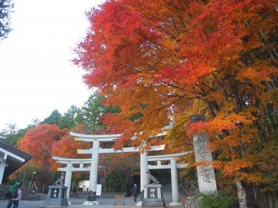 紅葉も楽しもうと三峯神社へ参拝に行ったけど、渋滞で紅葉はあまり見られなかった