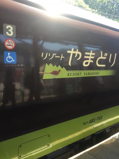 高崎からイベント列車乗継で越後湯沢へ2