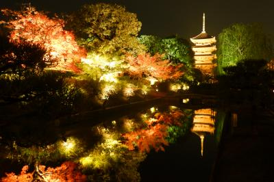 京都 ひたすら寺院を巡り紅葉をめでる一人旅(その4)