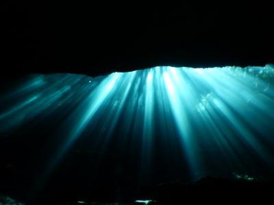 巡るMexico Playa del Carmen(Cenote Dive)