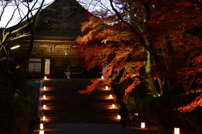 京都の紅葉 光明院から三井寺ライトアップへ!2017年