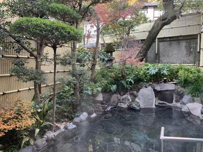 箱根湯本温泉_Hakone Yumoto Onsen 箱根温泉発祥の地!東海道沿いに栄えた箱根の玄関口となる温泉