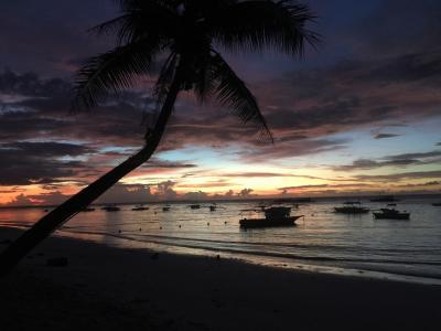 ソロトラベラー(フィリピンボホール島)♯107