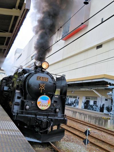 ♪ヽ(*^ω^*)ノダイジェスト■田丸屋 茶屋たまき 伊香保の昭和レトロテーマパーク■