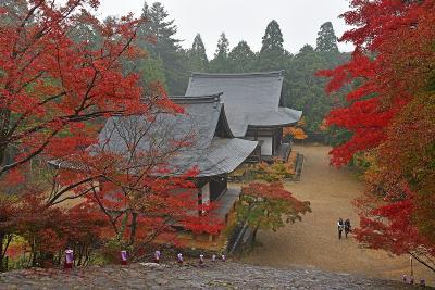 1年振りの秋の京都(1)-神護寺&西明寺ー
