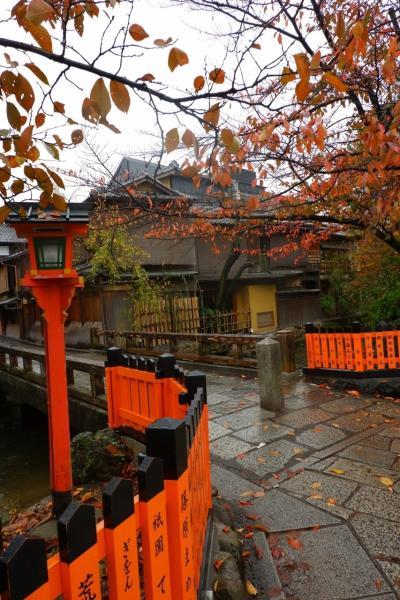 京都 ひたすら寺院を巡り紅葉をめでる一人旅(その6)