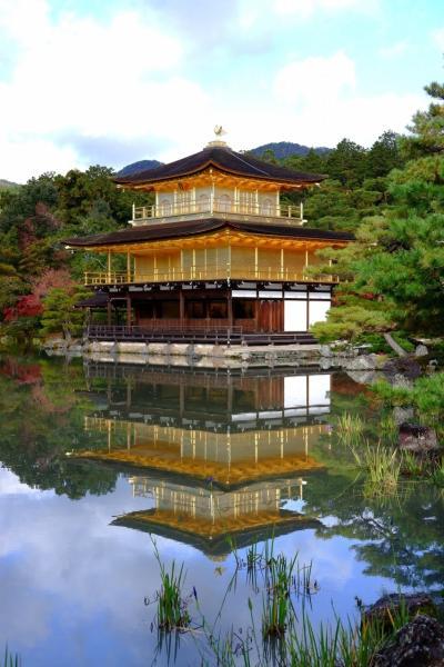 京都 ひたすら寺院を巡り紅葉をめでる一人旅(その8)
