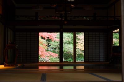京都 ひたすら寺院を巡り紅葉をめでる一人旅(その10・完結編!)