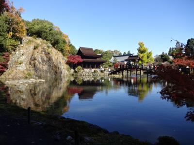 虎渓山永保寺の庭園へ