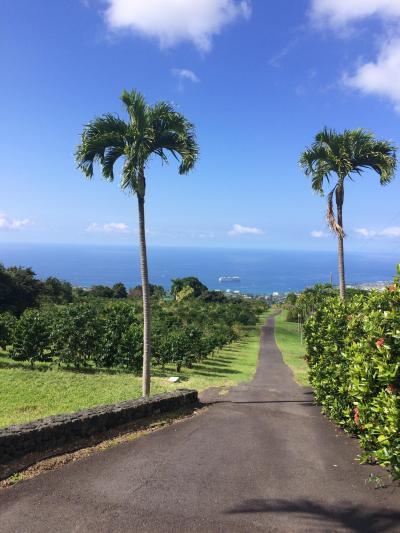 初のハワイ島 感動の毎日 1日目