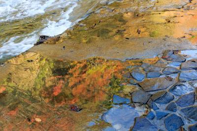 秋色渓流散策~養老渓谷~