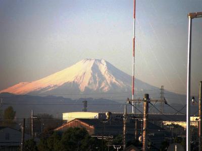 早朝ウォーキングコース沿いも秋の装い・・・今朝は富士山が素晴らしい姿で迎えてくれました