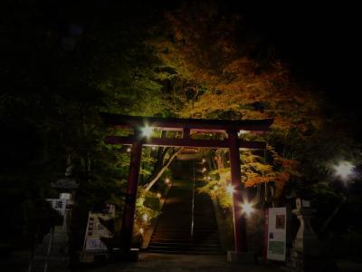 今年も談山神社の紅葉ライトアップへ