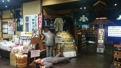 新潟県 越後湯沢温泉と埼玉県 長瀞 (中編) 温泉と日本酒と旨いもの