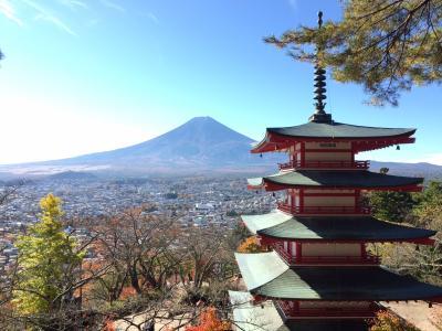 新倉富士浅間神社 絶景スポットと言われるひとつ! 富士山と五重の塔に疲れも忘れ・・