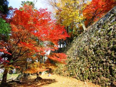 日本一の山城・高取城、壺阪寺をゆく