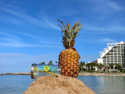 【5】今年もハワイに、アウラニに滞在しゴルフ・観光・グルメを楽しむ12日間(9日目~最終目)