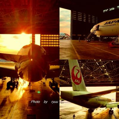 JAL工場見学 ~SKY MUSEUM~へ!! 3