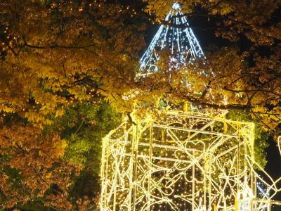 Illumination in Hiroshima~広島ドリミネーション