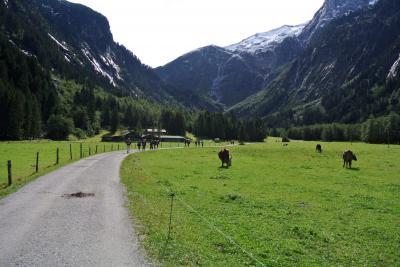 2017年 チロルでハイキングと街歩き 夫婦二人旅(9)ツェムバッハ Zemmgrundへ石採りハイキングとクラウゼン・アルム Klausen Almでランチ