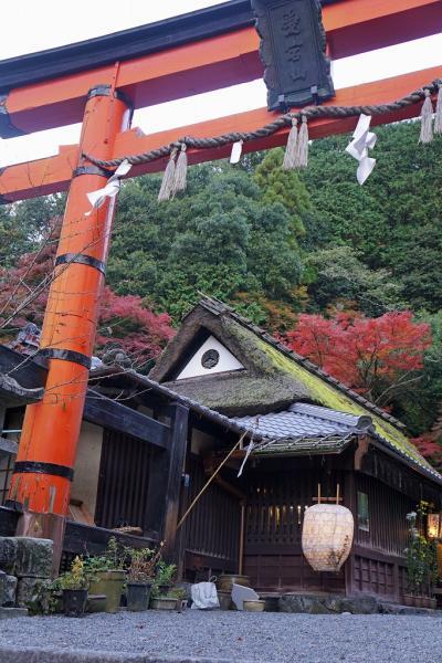 そうだ、法事にいこう。 母を連れて京都へ行き、帰りは姪と「シンデレラエクスプレス」