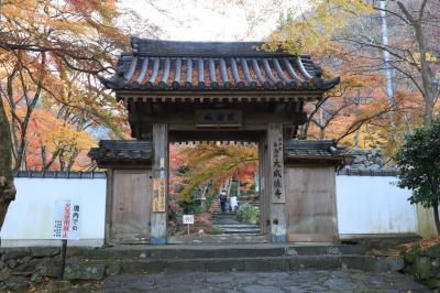 旅するイルカ♪ 大阪府岸和田市 大威徳寺紅葉へ