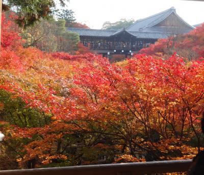超満員通勤電車なみの東福寺。臥雲橋でUターンです。