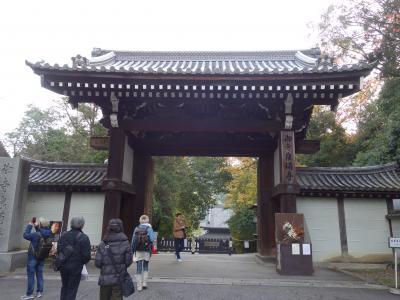 泉涌寺は9時開門。時間がないので,門前でお参り。