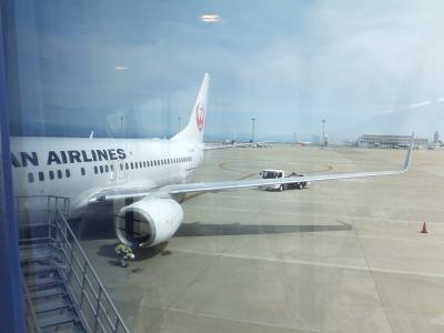 2017 またまた静岡遠征+野球観戦でナゴドーへ【その1】中部空港までフライト