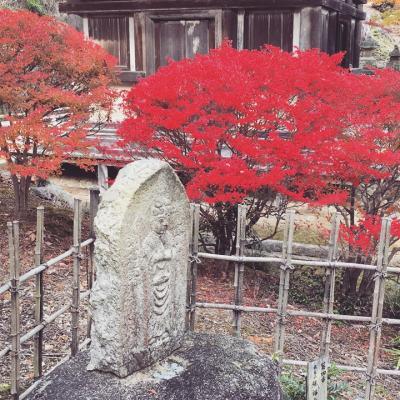 琵琶湖に秋を尋ねて