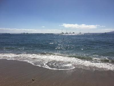 魅力たっぷりのマウイ島